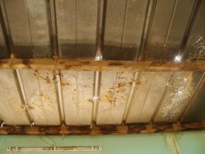 Aperçu du toit du CEEP avant la réhabilitation